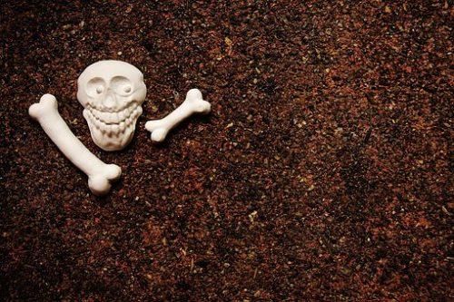 skull-and-crossbones-1709464__340