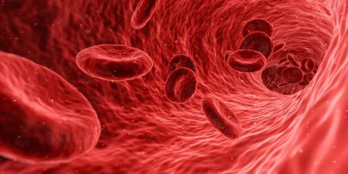 blood-1813410__340