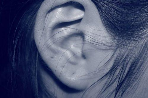 ear-207405__340