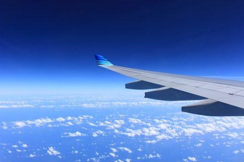 wing-221526__340