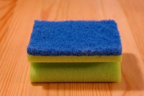 sponge-231922__340