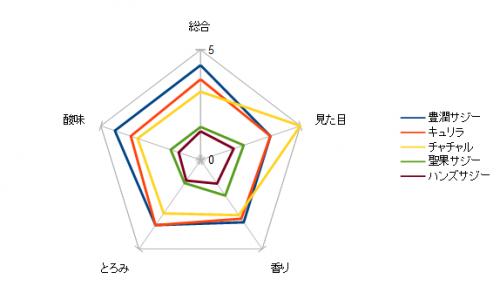 レーダーチャート(サジー原液のみ比べ)