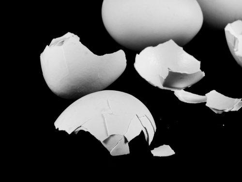 egg-2152811_960_720