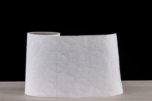 toilet-paper-2923445_960_720
