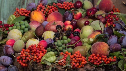 fruit-952425__340